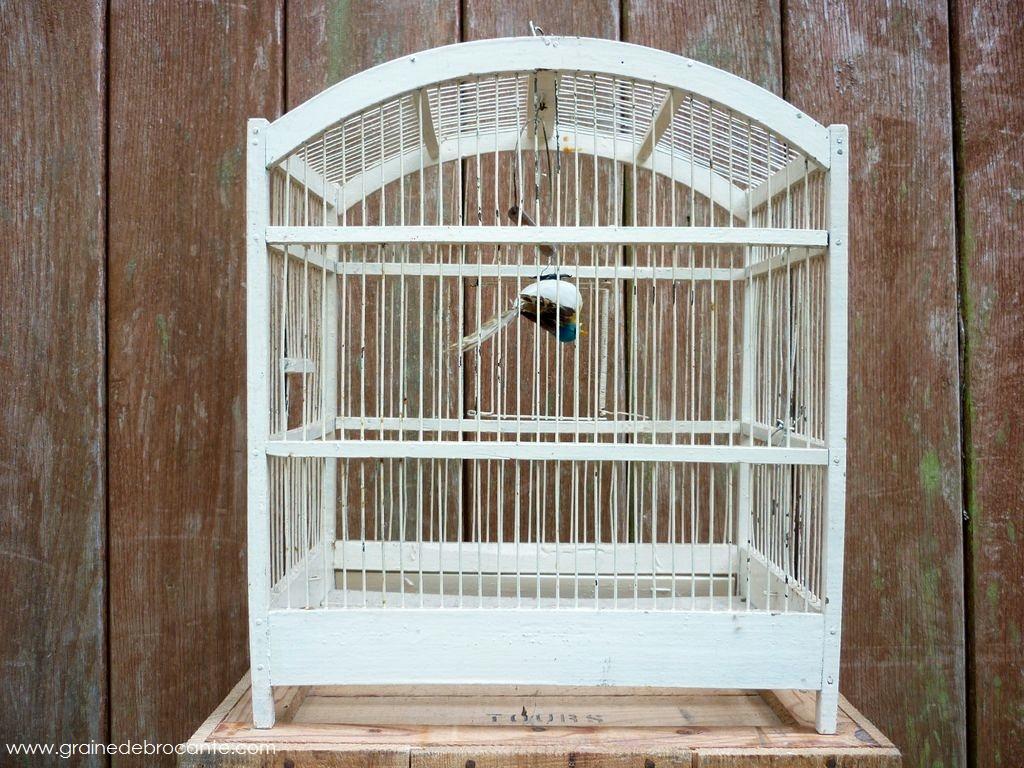 cage ancienne en bois peint. Black Bedroom Furniture Sets. Home Design Ideas