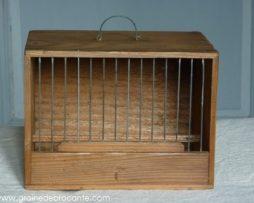 ptite cage ancienne oiseaux