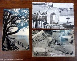 carte postale ancienne Noirmoutier